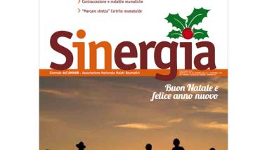 Sinergia – dicembre 2011