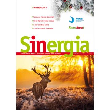 Sinergia – dicembre 2013