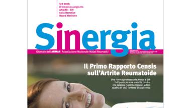 Sinergia – numero speciale 2008