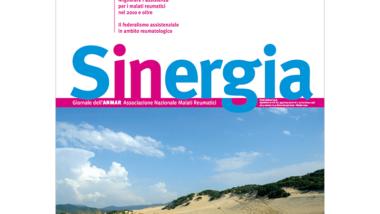 Sinergia – ottobre 2010